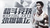 【ONE FC】最精彩的格斗赛